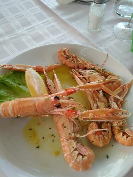 Škampi - chorvátsko