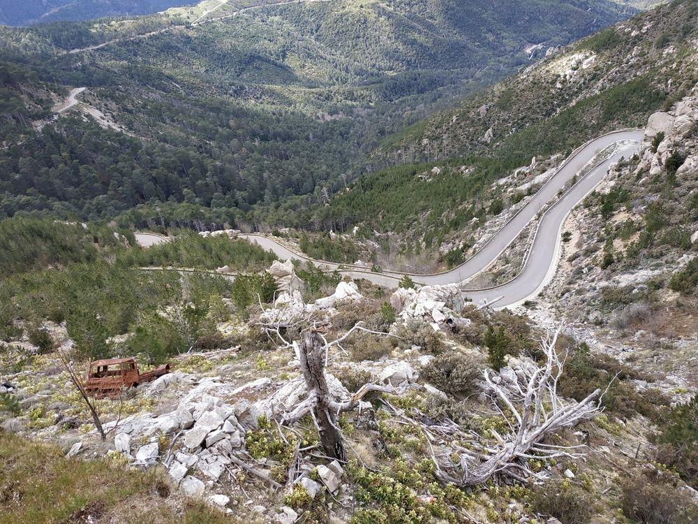 Cesta D69